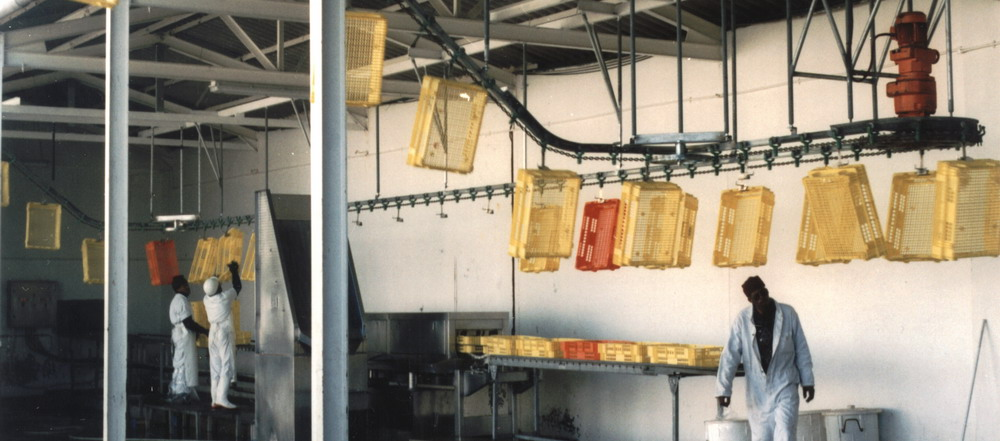 Overhead Monorail Conveying Stystem in Poultry Industry