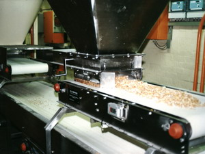 Food Industry Conveyor Systems